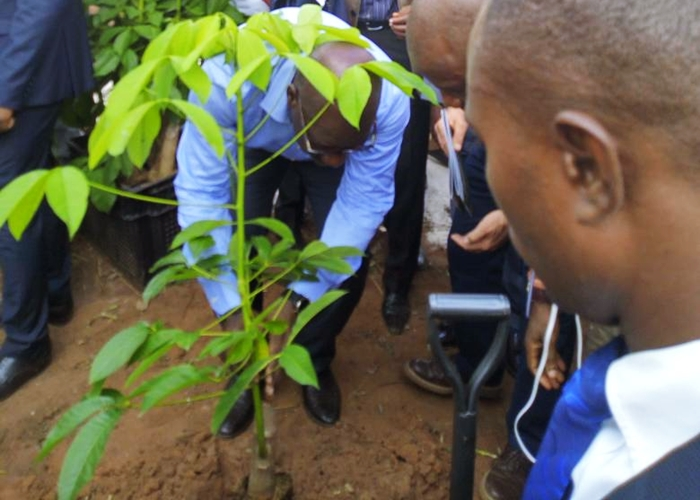 Edo State Governor, Mr. Godwin Obaseki planting the first rubber tree at the Rubber Estates Nigeria Limited (RENL)'s Urhonigbe Rubber Plantation, in Orhionmwon Local Government Area, Edo State, on Wednesday, June 6, 2018